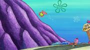 Patrick's Coupon 121