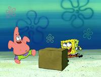 Idiot Box 013