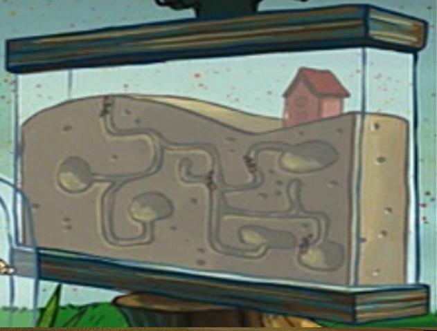File:Sandy's Ant Farm.png