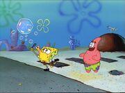 Bubblestand 055