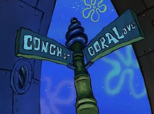 INTERSECTION OF CONCH AND CORAL