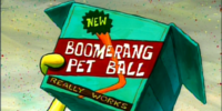 Boomerang Pet Ball