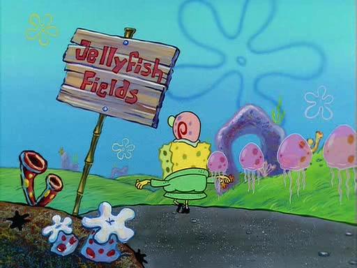 File:Jellyfish Jam Gallery (62).jpg