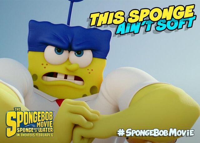 File:This sponge ain't soft.jpeg