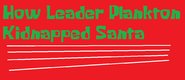 How Leader Plankton Kidnapped Santa