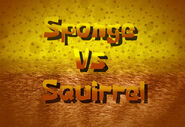 Sponge vs Squirrel
