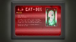 CATDOSSecretmattress