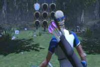 Archery quickshot boomer