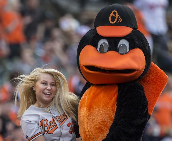 File:Oriole.jpg