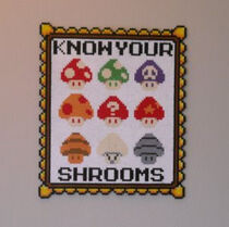 Know your shrooms