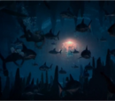 The Cave of Sleeping Sharks