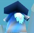 Bluewizard.jpg