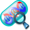 File:Contract RNA Interference.png