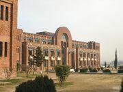 RealWorld Pakistan International University