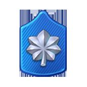 Badge Military Level 59