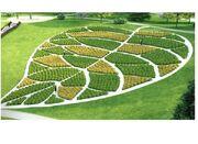 RealWorld Leaf Park