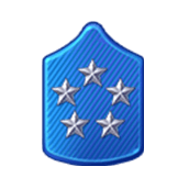 File:Badge Military Level 88.png