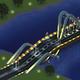 Quest Monorail Passengers