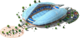 Victory Stadium L1
