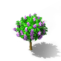File:Lilac Shrub.png