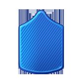 Badge Military Level 1