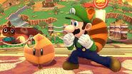 Luigi13