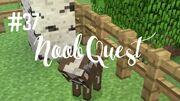 Noobquest37