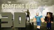 Crafting Dead 30