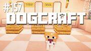 Dogcraft 157