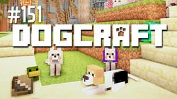 Dogcraft 151