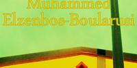M.E.B.: De Gulden Middenweg Bewandelen