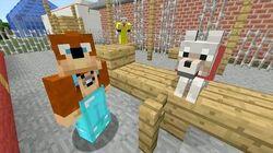 Minecraft Xbox - Playground 241