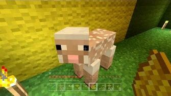 Minecraft Xbox - The Hungry Sheep 90