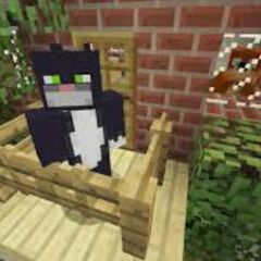 Kitty Cat Condo Balcony