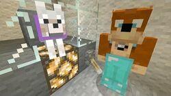 Minecraft Xbox - Glass Elavator -285-