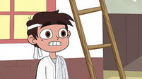S2E4 Marco 'glad you made that distinction'