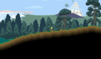 800px-Forest Biome