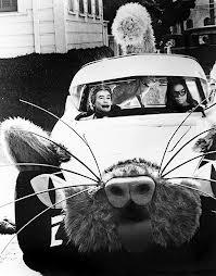File:Cat Car.jpg
