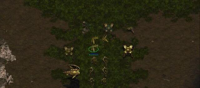 File:Protoss SC1 Game1.jpg