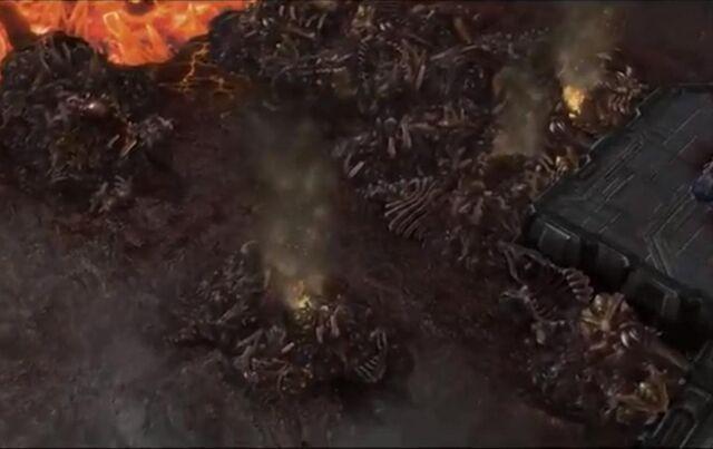 File:BoneTrench SC2-HotS Game1.jpg