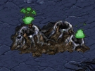 Vespene SC1 Game1
