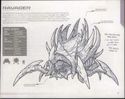 Ravager SC-FM Art1