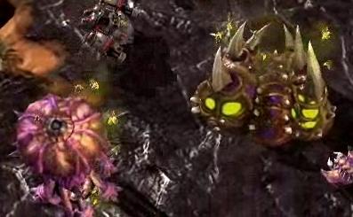 File:SwarmInfestation SC2 Game1.jpg