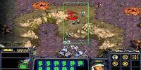 StarCraft: Enslavers