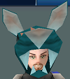 File:Icy rabbit ears.png