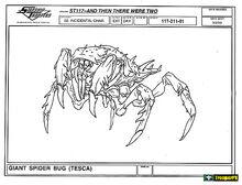 Nurser Spider