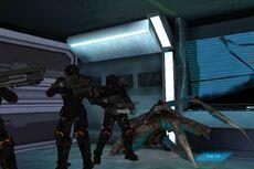 Sti-eliteguard-game-worker