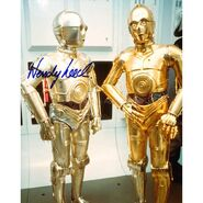 Wendy Leech as C-3PO