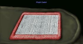 File:XWAFlightCadet.jpg