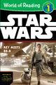 Rey Meets BB-8 Cover.jpg